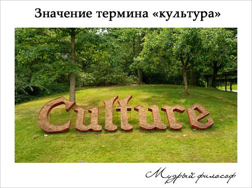 Значение термина культура